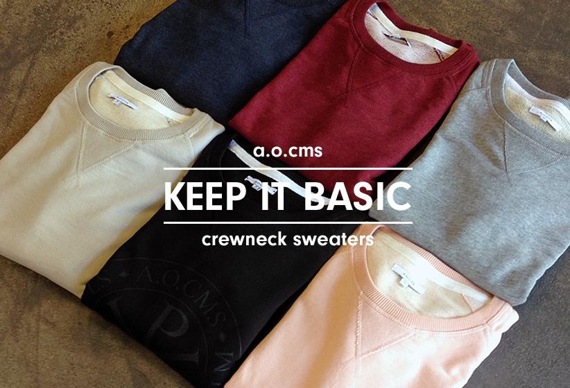 A.O.CMS Basics